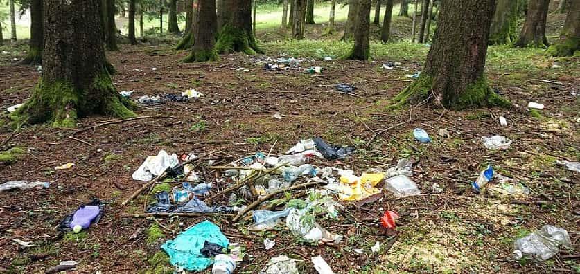 natuuractiviteit afval bos