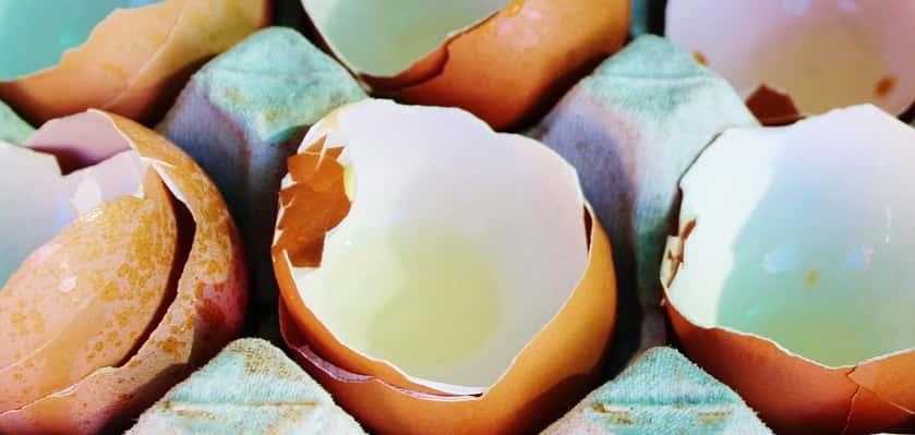 Paasactiviteit met ei en verf