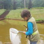 Waterdiertjes zoeken met een schepnet