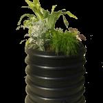 Worm_Box_zwart_met_plant