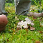 op blote voeten lopen heel gezond