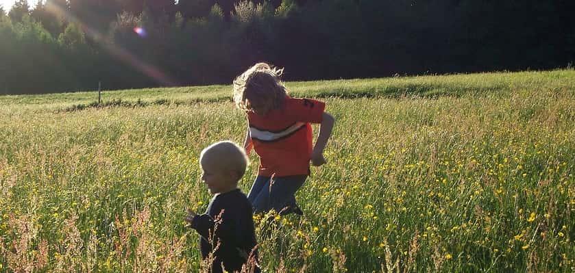 Met IVN app natuur in met kinderen