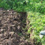 Moestuin omspitten slecht voor de bodem