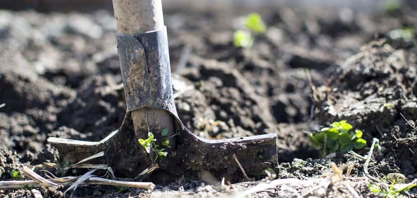 Tuin omspitten voor losse grond