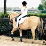 Kind op paardrijles