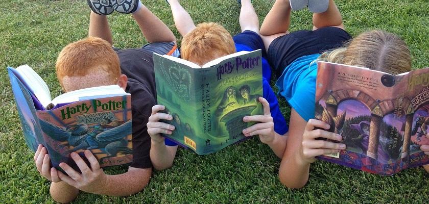 Hoe kies je het leukste kinderboek?