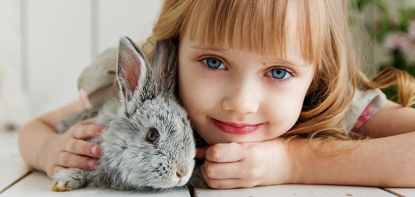 Kies het juiste huisdier voor jouw kind!