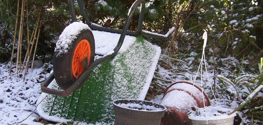 Moestuinieren doe je ook in de winter