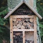 Met een insectenhotel help je de bijen, vlinders en andere insecten een handje.